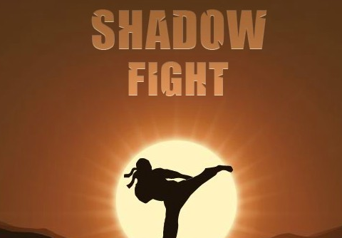 File:Wikia-Visualization-Main,shadowfight.png