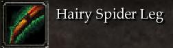 Hairy Spider Leg