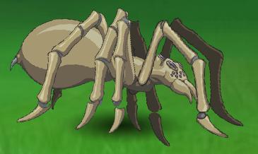 Tan Spider