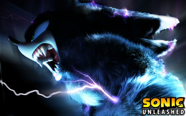 File:Sonic-the-Werehog-yeah-sonic-the-werehog-11556769-1680-1050.jpg