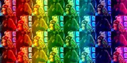 GeceTynka Rainbow Wallpaper