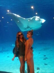 Bella-thorne-manta-ray-in-water-with-fanidk