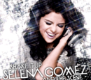 Shake It Up (song)