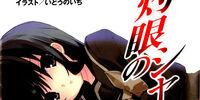 Shakugan no Shana Light Novel Volume 13