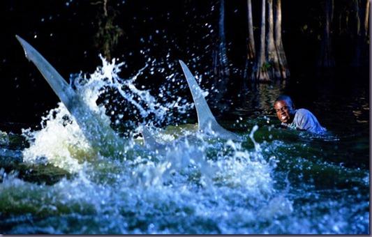 File:Shark-Night-3D-still-1 thumb-2-.jpg
