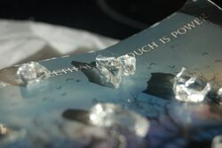 Shatter Me Photography - Photo 3