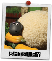 File:Shirley card.png
