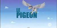 Le Pigeon (Episode)