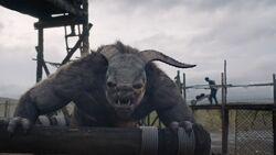 Herot's troll