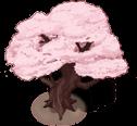 Sakura tree (3)