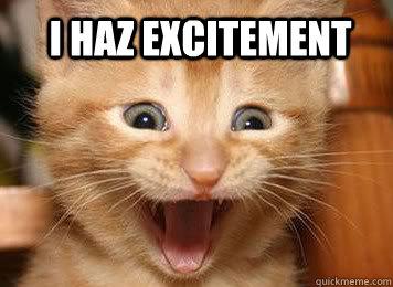 File:Excited kitten.jpg