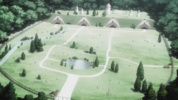 Lotus Farms