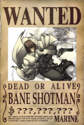 Bane's Wanted Poster