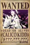 Calico Kidd's Wanted Poster