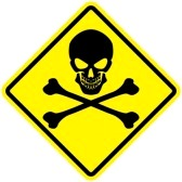 9599877-jolly-roger-sign