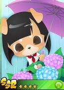 Hydrangea Girl Shibarin!