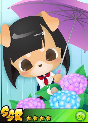 File:Hydrangea Girl Shibarin!.png