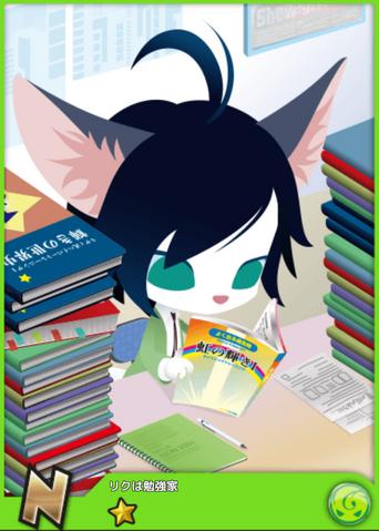 File:Riku - N Rank.png