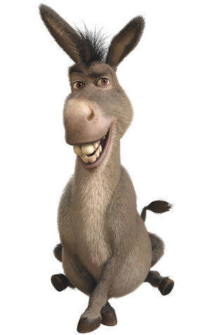 File:Donkeyprofile.jpg