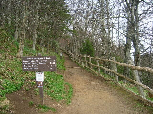 קובץ:800px-Appalachian Trail at Newfound Gap.JPG