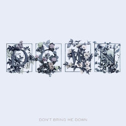 Don't Bring Me Down Single