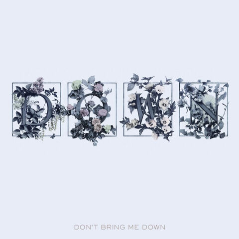 File:Don't Bring Me Down Single.jpg