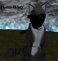 Thumbnail for version as of 04:54, May 26, 2014