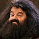 Rubeus Hagrid BTTS