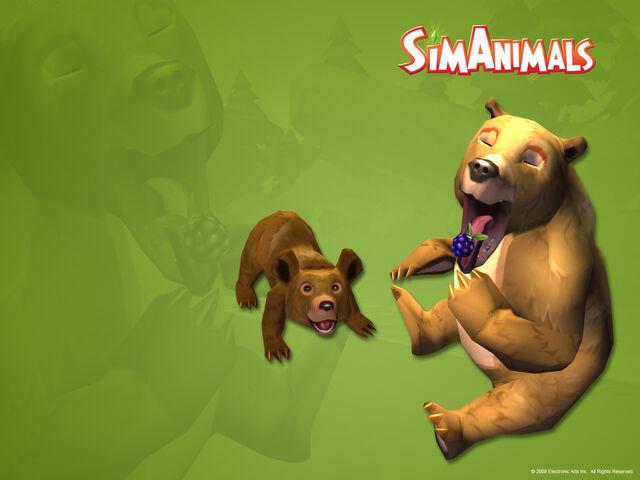 File:8926d1312398163-brown-bear-simanimals-wallpaper-brown-bear-wallpaper-brown-bear.jpg