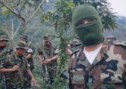 Colombian paramilitary