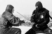 Revenge-Ninja-sword4