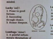 Homer Defined 45