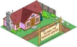 File:Guinea Pig Rescue Center.jpg