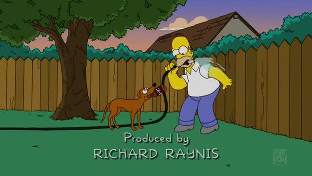 File:Bart gets a Z -00055.jpg