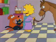 Lisa's Pony 65