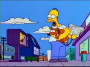 Homer story