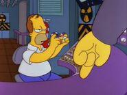 Homer Defined 36