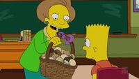 Bart gets a Z -00137
