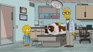 Lisa the Veterinarian 71