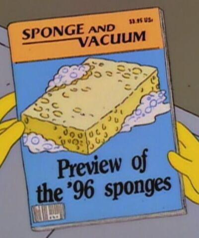File:Sponge and Vacuum.jpg