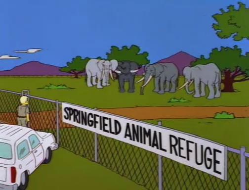 File:Bart Gets an Elephant 105.JPG