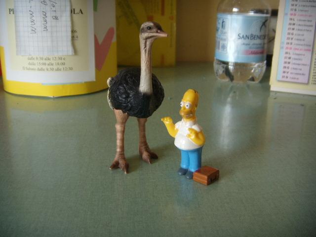 File:Homer e lo struzzo.JPG