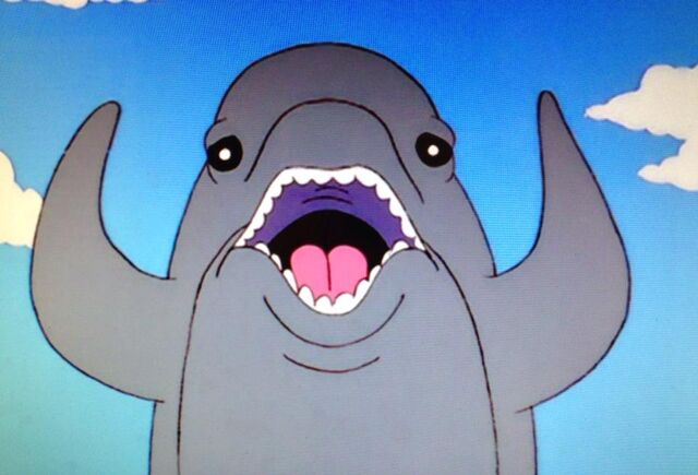 File:Funny dolphin.jpg