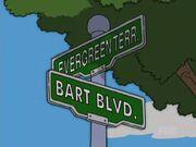 See Homer Run 26