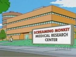 File:250px-Screaming Monkey.jpg