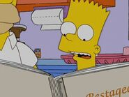 Homerazzi 55