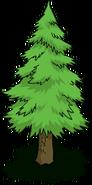Tree06 transimage