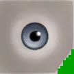 0x5ED16B32810C0341 grey eyes