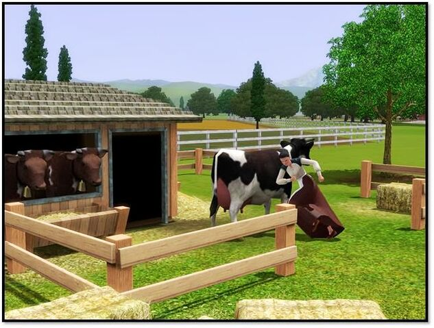 File:Cow store content 3.jpg