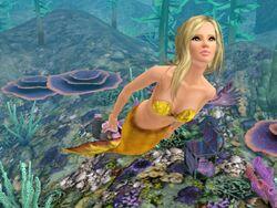 Mermaid-BHR (2)